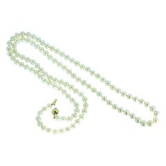 Long Strand of Fine Cultured Pearls