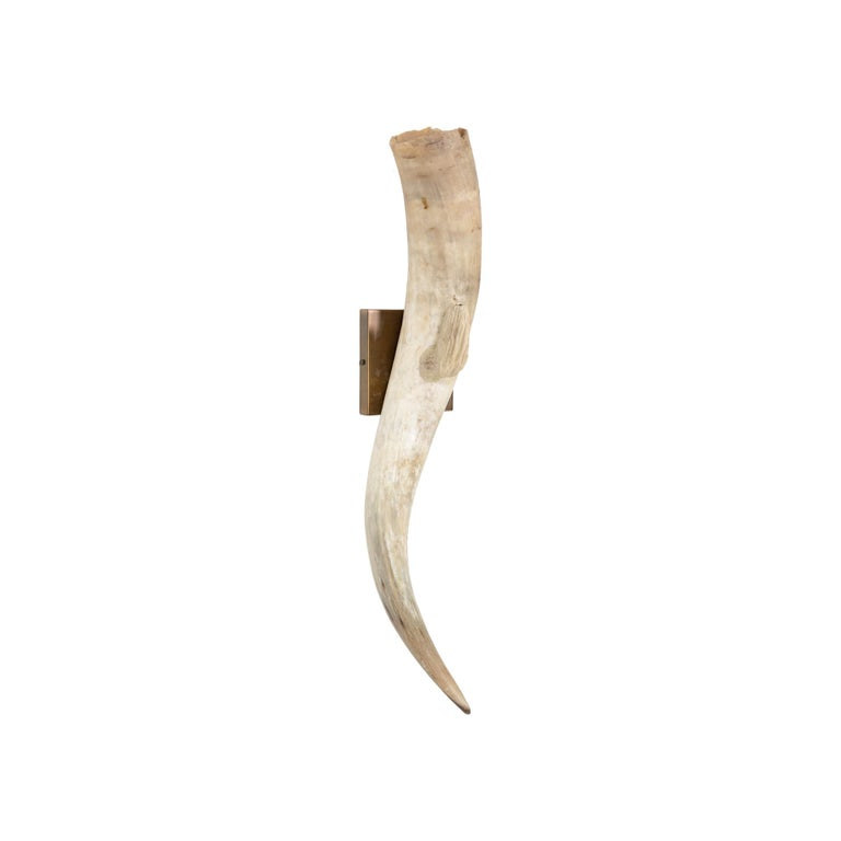 American Longhorn Wall Sconces For Sale