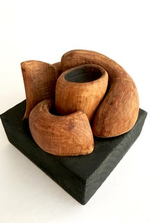 Wood Sculpture: 'Micro/Macro'