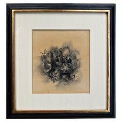 Loren Maciver 1940's Drawing Still Life of Fruit