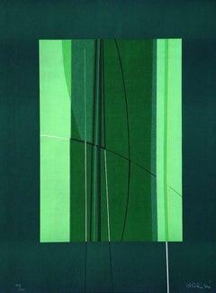 Green - Original Lithograph by Lorenzo Indrimi - 1970 ca.