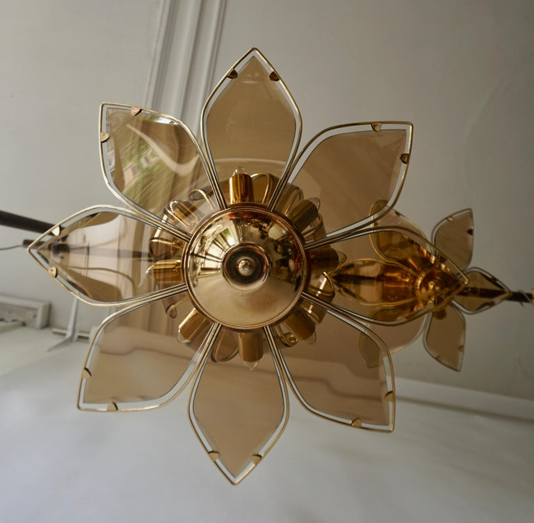 Lotus Chandelier in Brass and Glass For Sale 4