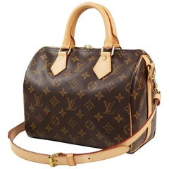 LOUIS VUITTON 2WAY shoulder bag Speedy bandouliere 25 Womens handbag M41113 brow