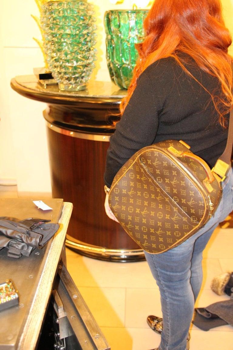 Louis Vuitton Backpack Monogramm Bag,Louis Vuitton Cross Body Bag, Louis Vuitton For Sale 14