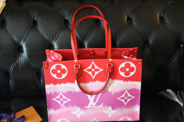 Louis Vuitton Bag Escale on the Go, Brand New 2020 Limited Edition For Sale 11