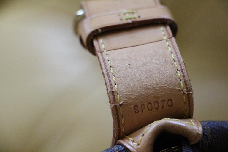 Louis Vuitton Cabin Size Travel Bag 40, Louis Vuitton Bag For Sale 11