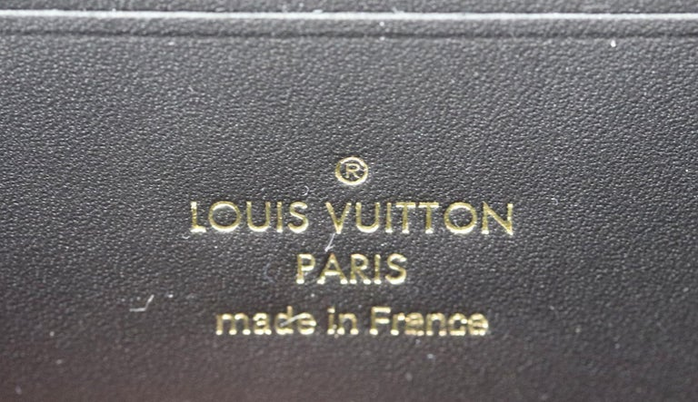 Louis Vuitton Dauphine 1854 MM Leather Trimmed Canvas Wallet On Chain Bag For Sale 6