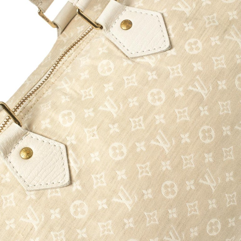 Louis Vuitton Dune Monogram Mini Lin Canvas Speedy 30 Bag 4