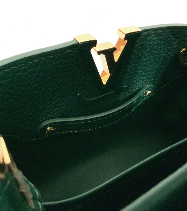 Louis Vuitton Emeraude Green Leather and Python Skin Capucines Mini Bag  For Sale 7