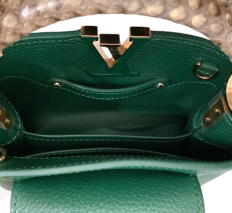 Louis Vuitton Emeraude Green Leather and Python Skin Capucines Mini Bag  For Sale 8
