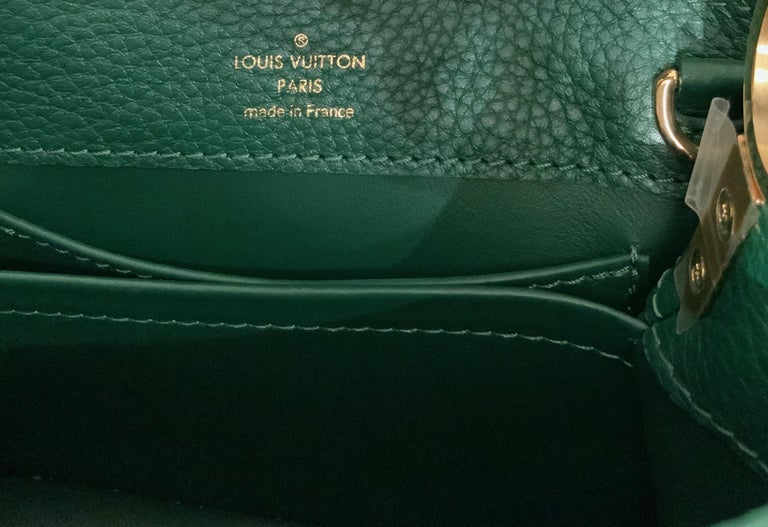 Louis Vuitton Emeraude Green Leather and Python Skin Capucines Mini Bag  For Sale 10