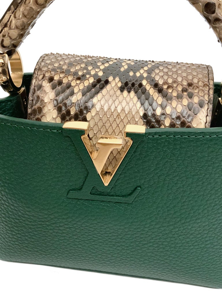 Louis Vuitton Emeraude Green Leather and Python Skin Capucines Mini Bag  For Sale 1