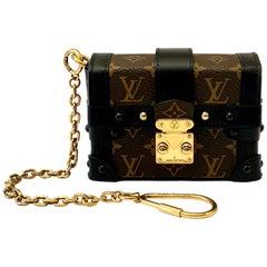 Louis Vuitton Essential Trunk Bag