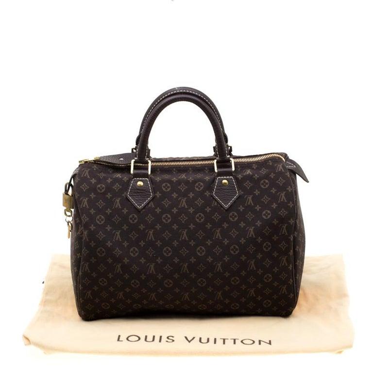 Louis Vuitton Fusain Monogram Canvas Mini Lin Speedy 30 Bag 7