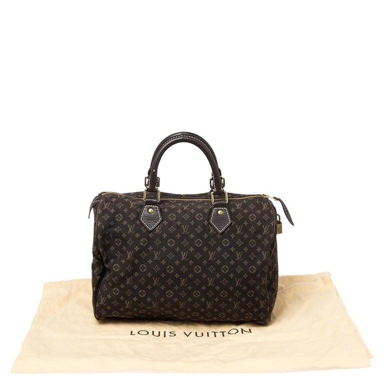 Louis Vuitton Fusain Monogram Canvas Mini Lin Speedy 30 Bag For Sale 8