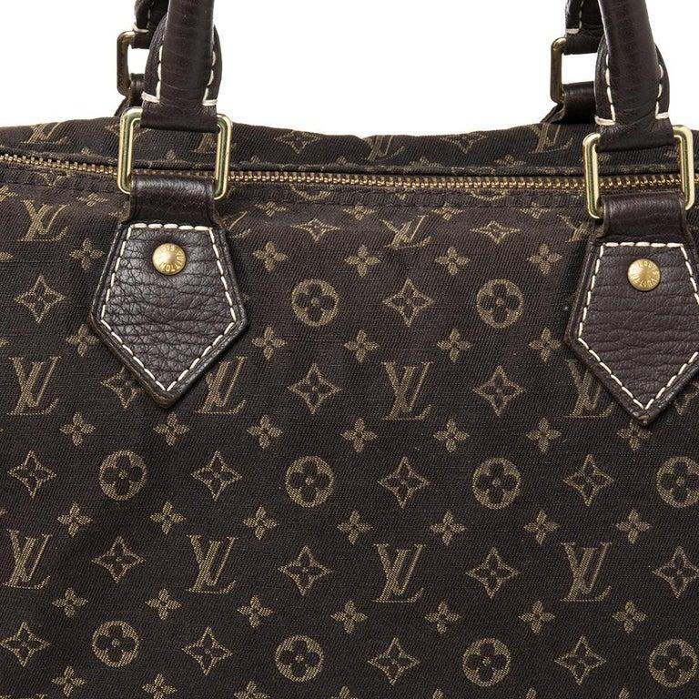 Louis Vuitton Fusain Monogram Canvas Mini Lin Speedy 30 Bag For Sale 1