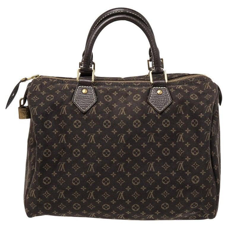 Louis Vuitton Fusain Monogram Canvas Mini Lin Speedy 30 Bag For Sale