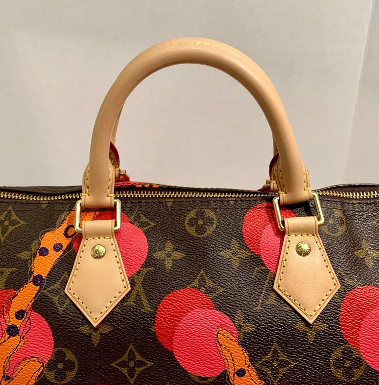 Louis Vuitton Limited Edition Speedy 30 Grenade Ramages Monogram Canvas Purse For Sale 4