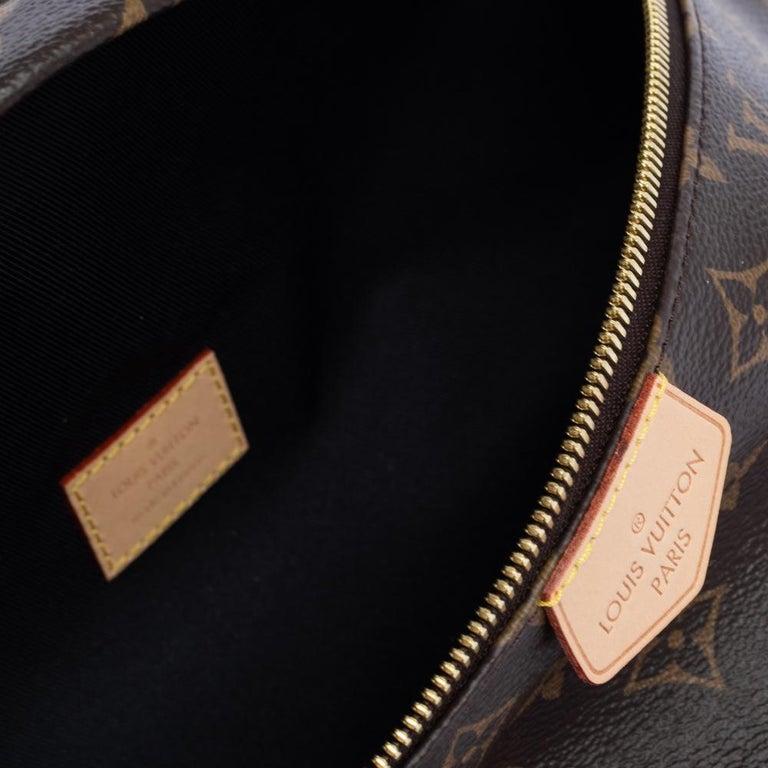 Louis Vuitton Monogram Canvas Bumbag MM Belt Bag For Sale 2