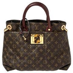 Louis Vuitton Monogram Canvas Limited Edition Etoile Exotique MM Bag