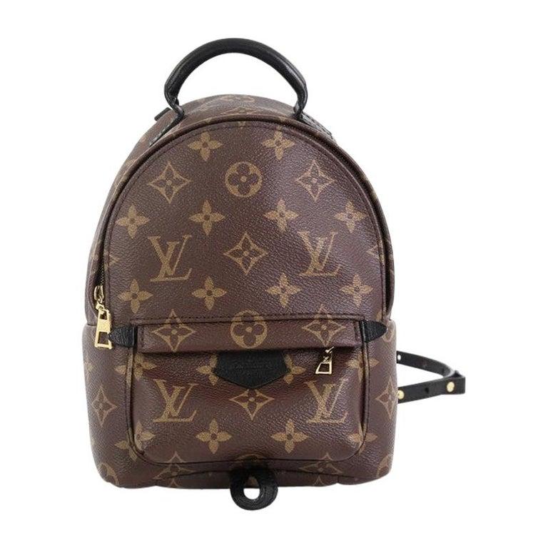 Louis Vuitton Palm Springs Backpack Monogram Canvas Mini  For Sale