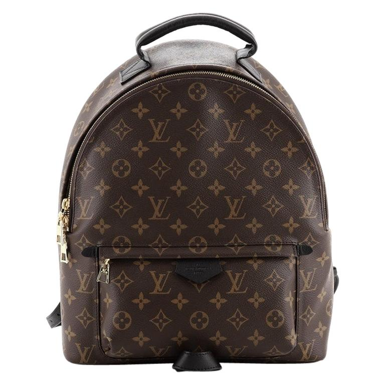Louis Vuitton Palm Springs Backpack Monogram Canvas MM For Sale