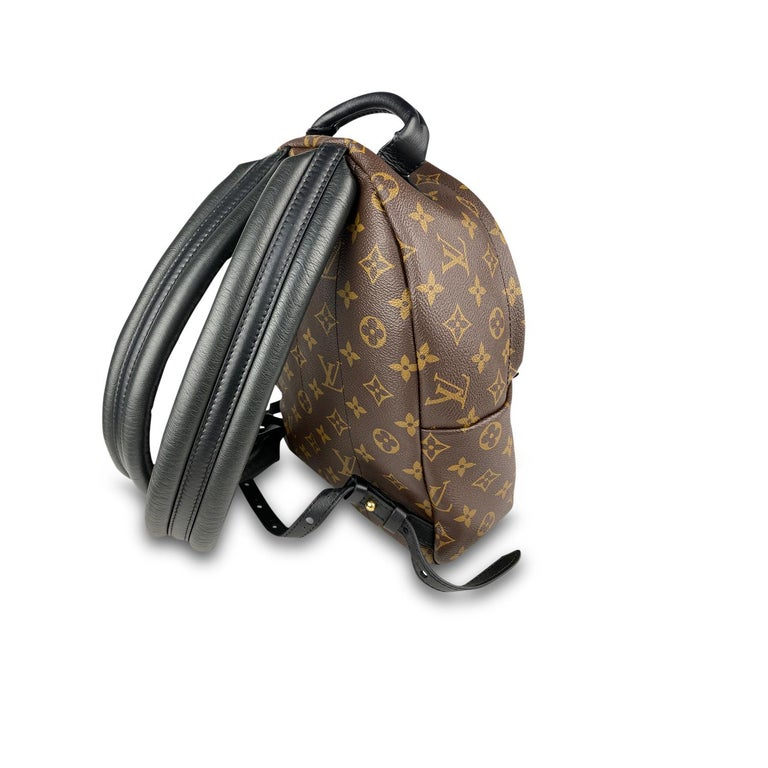 Louis Vuitton Palm Springs Backpack PM 6