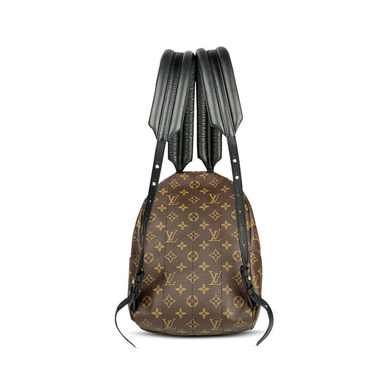 Louis Vuitton Palm Springs Backpack PM 8