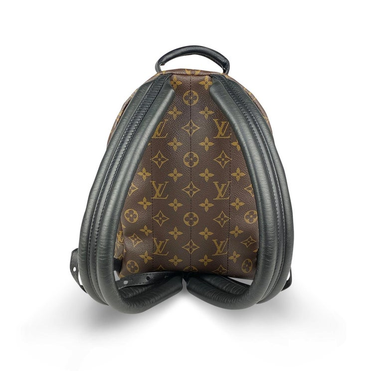 Women's Louis Vuitton Palm Springs Backpack PM