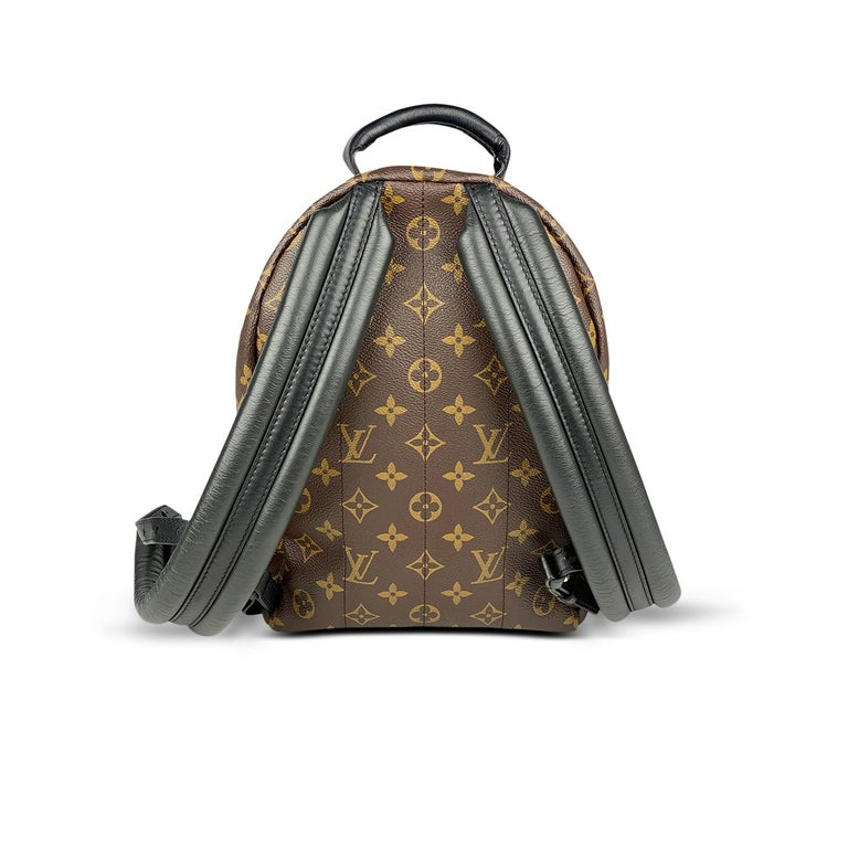 Louis Vuitton Palm Springs Backpack PM 1