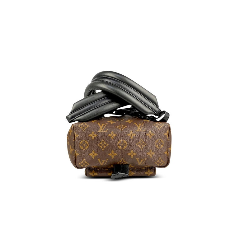 Louis Vuitton Palm Springs Backpack PM 2