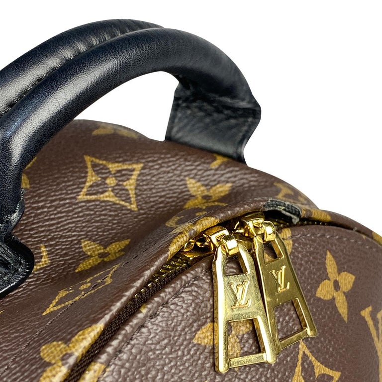 Louis Vuitton Palm Springs Backpack PM 3