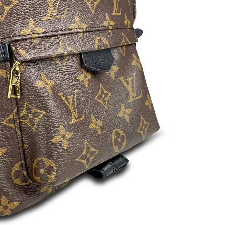 Louis Vuitton Palm Springs Backpack PM 4