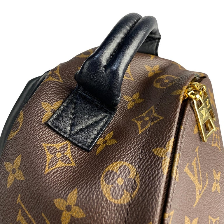 Louis Vuitton Palm Springs Backpack PM 5