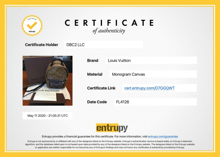Louis Vuitton Palm Springs Brown Monogram Backpack Handbag For Sale 5