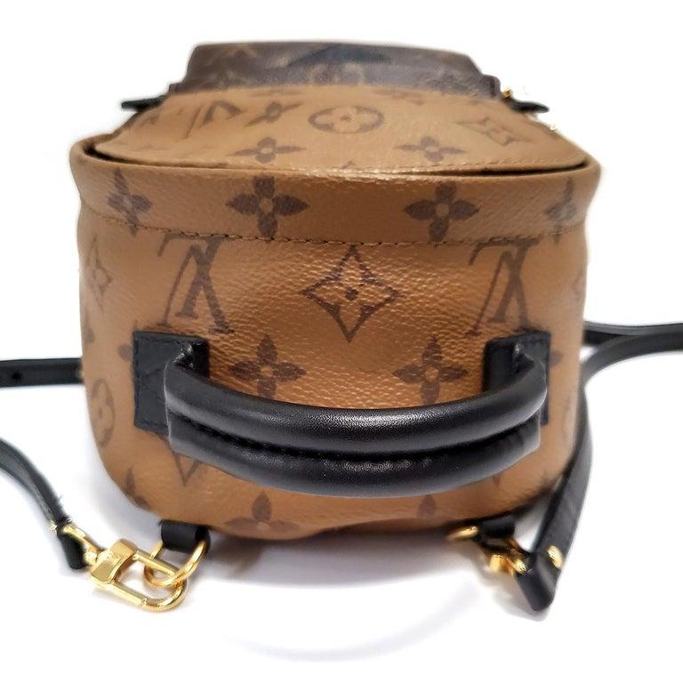 Women's Louis Vuitton Palm Springs Brown Monogram Backpack Handbag For Sale