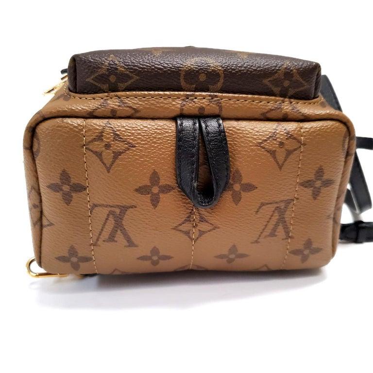 Louis Vuitton Palm Springs Brown Monogram Backpack Handbag For Sale 1