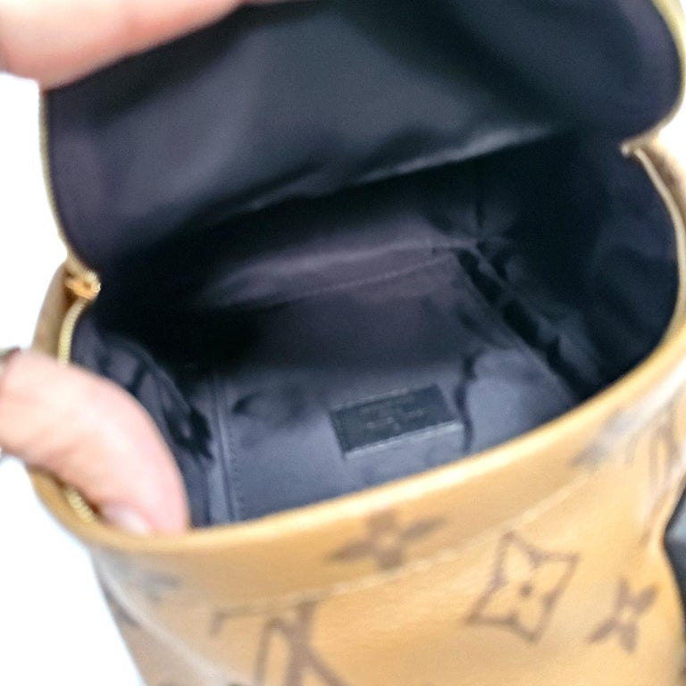 Louis Vuitton Palm Springs Brown Monogram Backpack Handbag For Sale 3