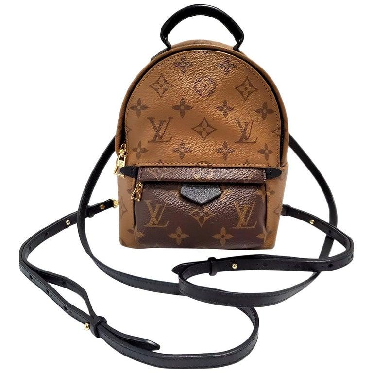 Louis Vuitton Palm Springs Brown Monogram Backpack Handbag For Sale