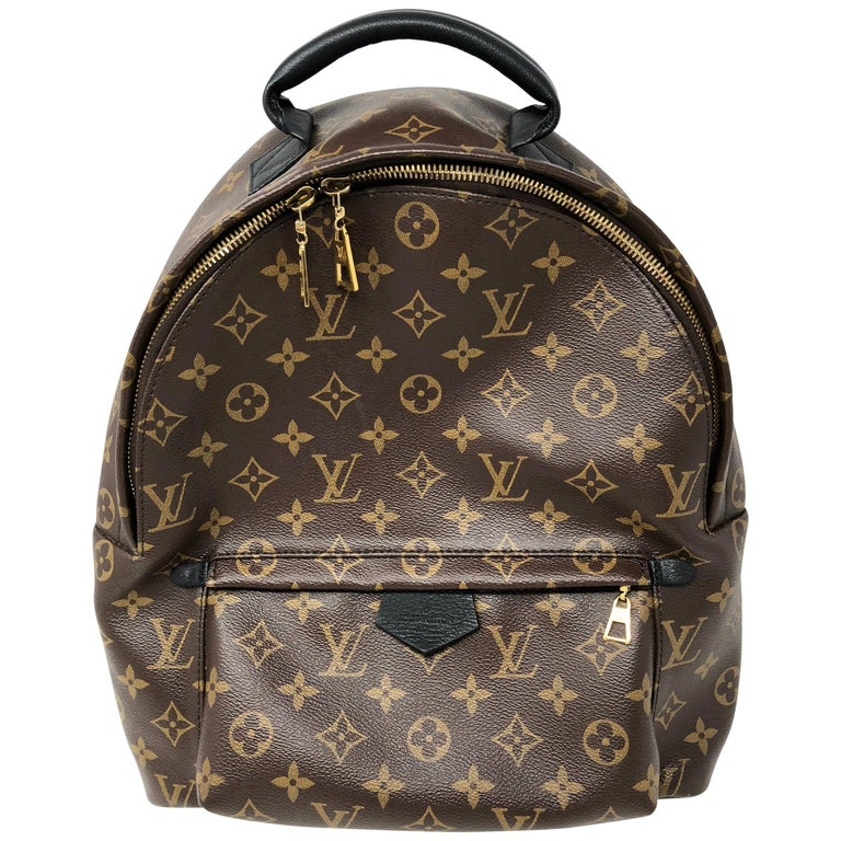 Louis Vuitton Palm Springs Mm Backpack For Sale At 1stdibs