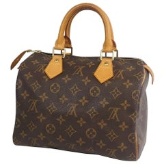 LOUIS VUITTON Speedy 25 Womens handbag M41528