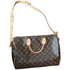 Louis Vuitton Speedy 35 Bag