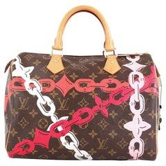 Louis Vuitton Speedy Handbag Limited Edition Bay Monogram Canvas 30
