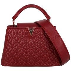 Louis Vuitton Women's Handbag Capucines Red Leather