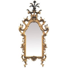 Louis XIV Huge Carved Wood Mirror