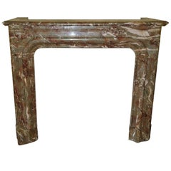Louis XIV Style Marble Fireplace  19th. Century