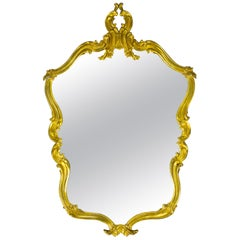 Louis XV or Rococo Style Wall Mirror in Gilt Bronze