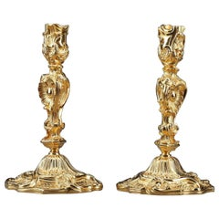 Louis XV Style Candlesticks in Gilt Bronze