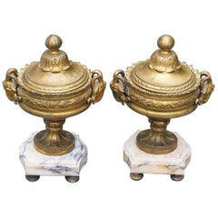 Louis XVI Pair of Vases, France, 19th Century