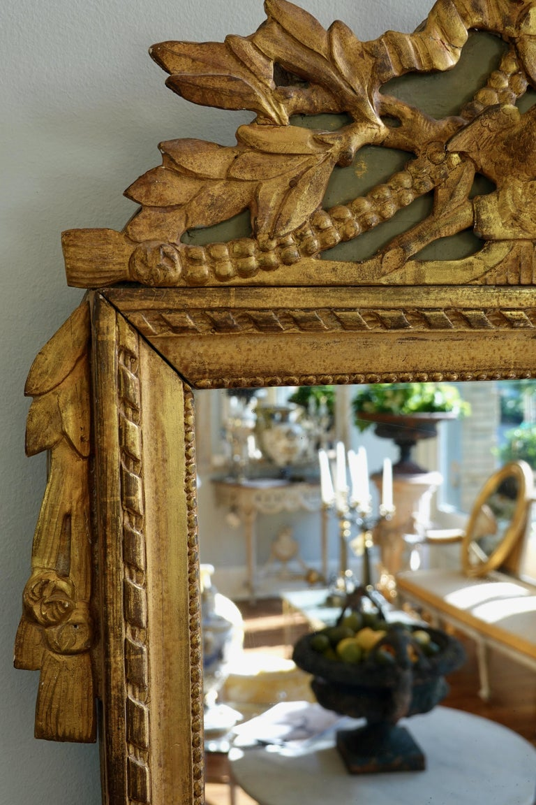 Louis XVI Period Marriage Trumeau Mirror with Birds For Sale 3